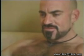 Sex ledish dog com