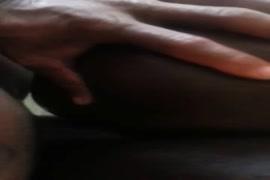 Video hindi xxx hd gand dog