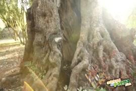 ववव करिश्मा खन्ना नंगी फोटो कॉम