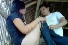 Janwar xxx randy bojpuri video